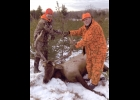 Jeremy and Don Michalski Sr. are shown with the Elk that Jeremy shot the week before Christmas in Atlanta, MI.  --Courtesy Photo