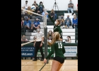 RAYNE WILSON (#1) gets one of her 7 kills in Mondays 3-0 defeat of the Gladwin Flying G's.          	              --Journal Photo