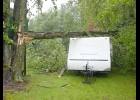 WEDNESDAY AFTERNOON'S STORMS caused a large number of downed limbs and power outages throughout the area. This trailer, stored on property along M13 had 1 limb miss just to the left, and a second fell across the top, but caught in the branches of another tree on the far side, amazingly resulting in no damage to the unit.								 --Journal Photo
