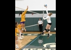 VIRGINIA BERGER (#4) goes up for the kill on Saturday against Bay City Central.         --Journal Photo